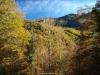 el otoño en el bosque de Fabucao