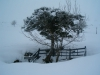 Pozu Funeres con nieve