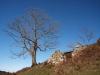 Cabaña en ruinas en Cerralín