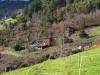 Pueblo de Cedmón (Boal)