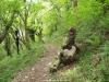 Bajando de Vis por el bosque hacia el puente vieyu