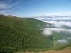 La niebla en los valles