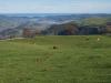 Campu les Cruces con vistas a la desembocadura de la ría de Villaviciosa