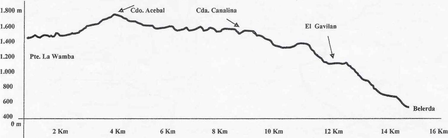 Perfil ruta 20150516